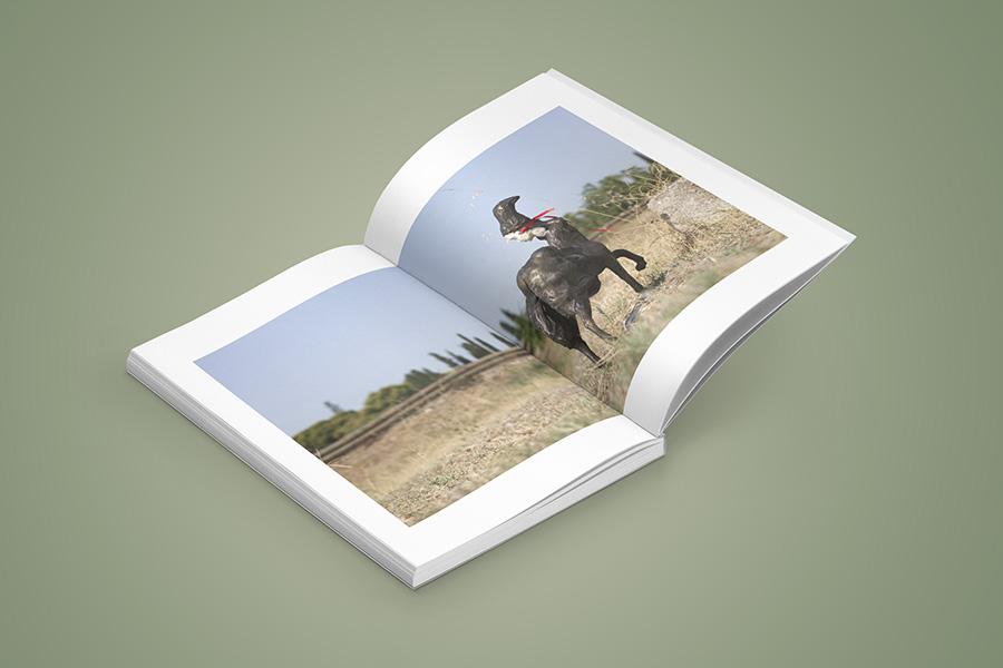 schema_design_maria_loizidou_catalogue_neon7.jpg