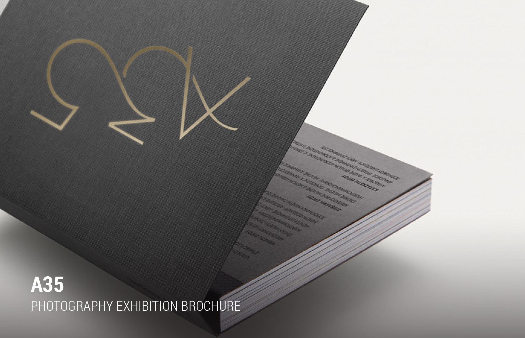 Schema Dimitra Chrona designer, creative director, architectural, 3D visualization, 3D Rendering, branding websites, digital, graphic design, interior design, real estate, luxury property, staging, museum, virtual, art, brochures, exhibitions, logotype, logo, Canada Quebec Montreal Athens Greece schema design a35 heritage building brochure large.jpg