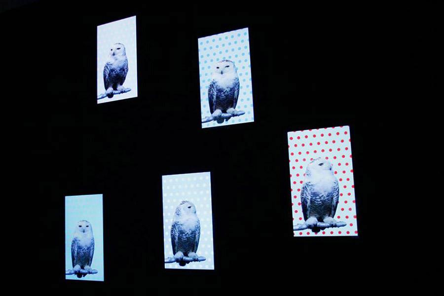 schema_design_robert_wilson_exhibition_sgt3.jpg