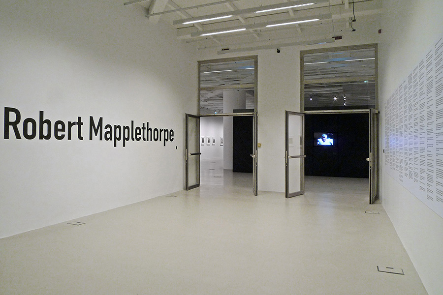 schema_design_mapplethorpe_exhibition_sgt1.jpg