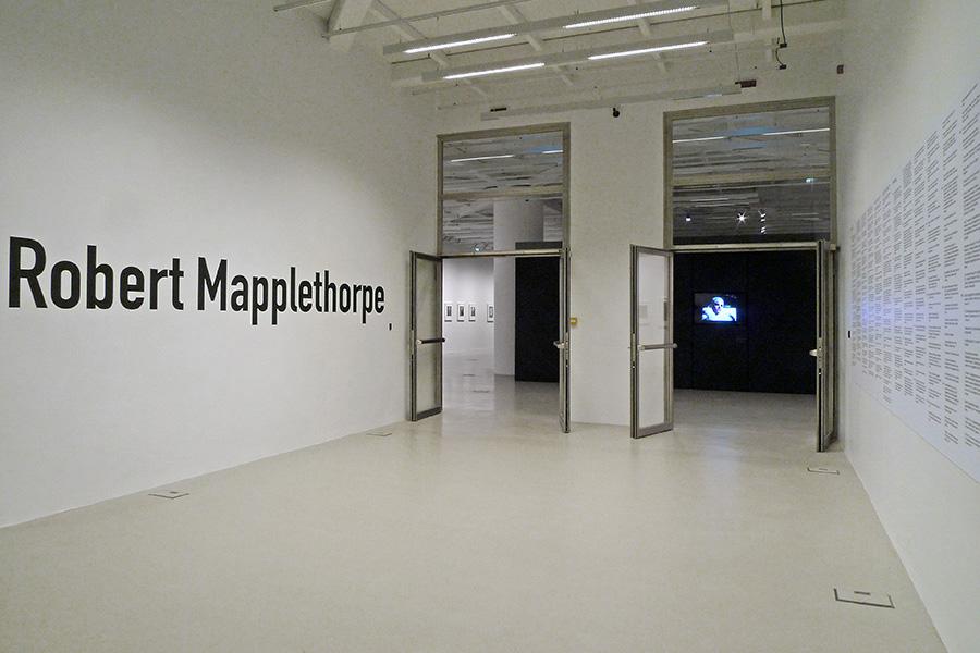 schema_design_mapplethorpe_exhibition_sgt1.jpg