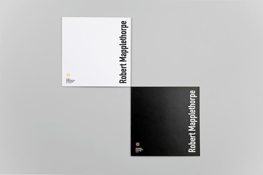 schema_design_mapplethorpe_exhibition_sgt11.jpg