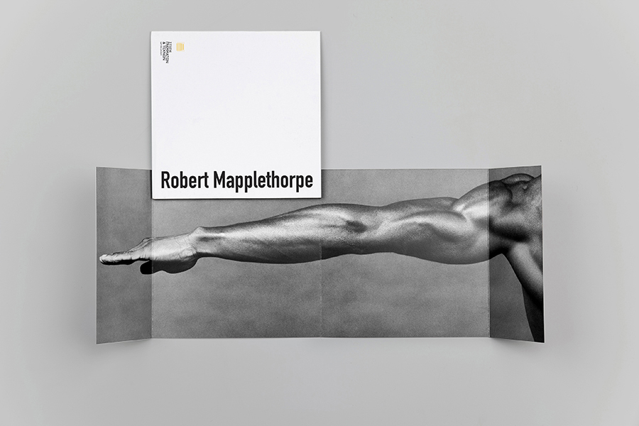 schema_design_mapplethorpe_exhibition_sgt12.jpg