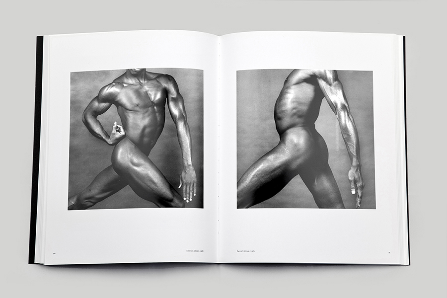 schema_design_mapplethorpe_exhibition_sgt6.jpg